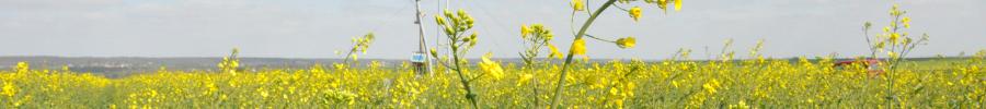 Bienvenue sur le site Agriculture et Qualité de l'air