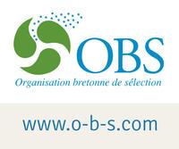 logo-obs-avec-site