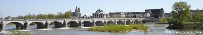 Pont Wilson, Tours