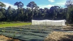 Bienvenue sur le site d'inscription au CIAg de Guyane