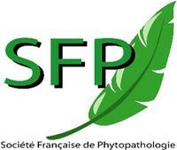 logo-SFP