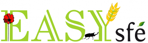 EASYs Logo