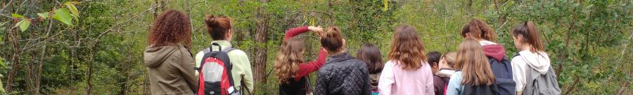 Bienvenue sur le site du colloque L'écologie, du labo à l'école