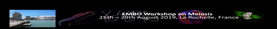 EMBO Workshop on Meiosis 2019