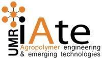 logo IATE