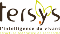 SFR TERSYS, Avignon - FRANCE