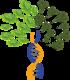 Logo IUFRO 2016