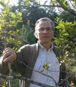 Antoine Kremer - Co-Chair INRA