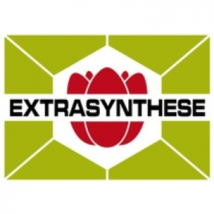 logo extrasynthese