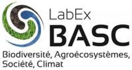 Labex BASC logo