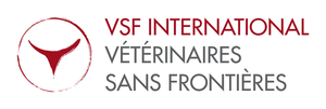 VSF INTERNATIONAL