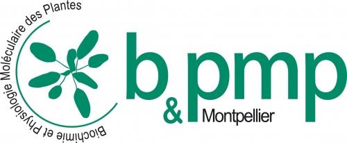 logo bpmp