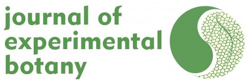 logo JEB