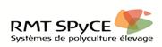 logo RMT SPYCE