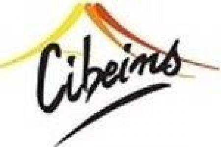 logo cibeins