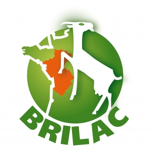 BRILAC