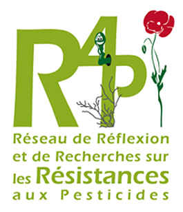 logo r4p