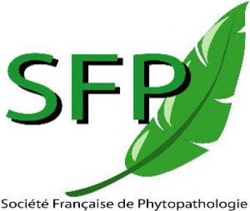 logo sfp