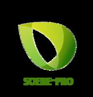 logo_soerepro-02-2