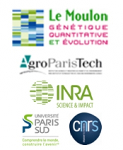 logos_le_Moulon_AgroParisTech_INRA_UPSud_CNRS