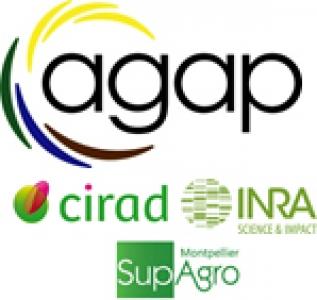 logos_Agap