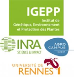 logos_IGEPP-INRA_AgroCampus_Université_Rennes1